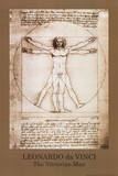 Leonardo da Vinci - Vitruvian Man, Green Border, Art Poster Print Prints