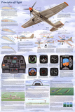 Principles of Flight Aerodynamic Educational Science Chart Poster Fotografie