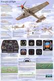Principles of Flight Aerodynamic Educational Science Chart Poster - Afiş