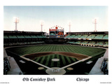 Ira Rosen Chicago White Sox Old Comiskey Park Sports Poster Print Posters