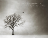 Psalm 37 Be Still Before the Lord Art Poster Print Prints