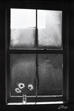 Hope (Window with Flowers) Affiches