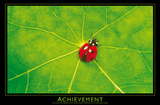 Ladybug (Achievement) Art Poster Print Print