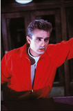 James Dean (Rebel Without a Cause) Movie Postcard Photo