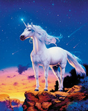 Unicorn (Comets) Art Poster Print Photo