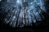 Imagination Keep Your Eyes on the Stars and Your Feet on the Ground Print
