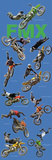 Freestyle Motocross (Riders in Air, FMX) Sports Poster Print Affiches
