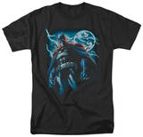 Batman - Stormy Knight Shirts