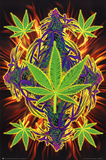 Flaming Leaf Pot Marijuana Art Print Poster Prints