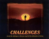 Challenges (Bicyclist) Art Poster Print Photo