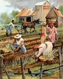 Planting Time Print POSTER black slaves slavery wrong Posters