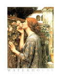 John William Waterhouse Sweet Rose Art Print Poster Posters