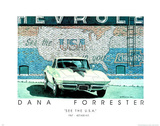 Dana Forrester (See The USA) Art Print Poster Posters