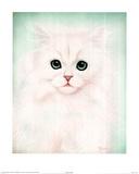 T. Richard (Kit Kat) Art Print Poster Photo