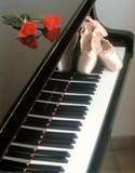 Ballet Shoes (On Piano) Art Poster Print Posters