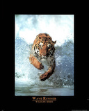 Tiger Wave Runner Wildlife Series Art Print Poster Prints