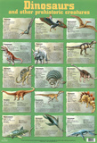 Laminated Dinosaur Educational Chart Poster Print Print