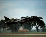 AV-8 Harrier (Taking Off) Art Poster Print Posters