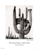 Ansel Adams Mural Project Saguaro Monument Art Print Poster Print