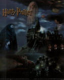 Harry Potter Movie Collage 3-D Lenticular Poster Print Pósters