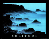 Solitude (Motivational) Photo Print Poster Posters