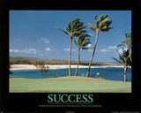 Success (Golf) Art Poster Print Posters