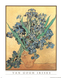 Vincent Van Gogh Vase of Irises Art Print Poster Photo