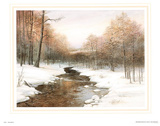Peaceful Stream in Snowy Winter Forest Art Print Poster Print