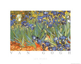 Vincent Van Gogh Les Irises Art Print Poster Posters