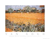 Vincent Van Gogh Arles with Irises Art Print Poster Affiches