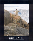 Courage (Penguin) Art Poster Print Print