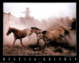 Mustang Roundup (Animals) Photo Print Poster Posters