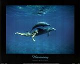 Dolphins w/ nude Woman (Harmony) Photo Print Poster Prints