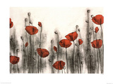 Hans Andkjaer Red Poppies Art Print Poster Prints