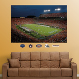 Auburn Stadium mural Wall Decal