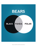 Bears Venn Diagram Posters by Stephen Wildish