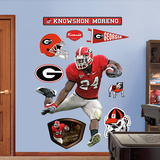 Knowshon Moreno Georgia Wall Decal