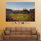 Texas Rangers Ballpark in Arlington Flyover Mural Wall Decal