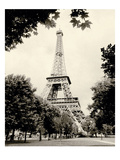 Eiffel Tower I - black and white Premium Giclee Print by Amy Melious