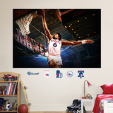 Julius Erving Mural Wall Decal