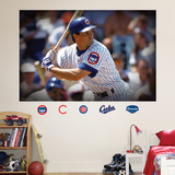 Ryne Sandberg Mural Wall Decal