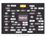 The Big Cat Identification Chart Poster by Stephen Wildish