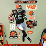 Josh Cribbs Wall Decal