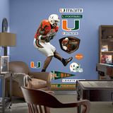 NCAA/NFLPA Miami Hurricanes Andre Johnson Wall Decal Sticker Wall Decal