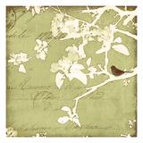 Song Birds I - Green Reproduction procédé giclée par Amy Melious
