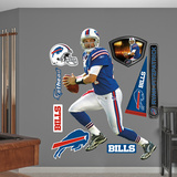 Ryan Fitzpatrick 2011 Wall Decal