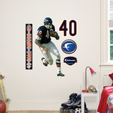 Gale Sayers Jr. Wall Decal