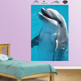 Dolphin Mural Wall Decal