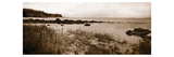 Sepia Island Shores I Premium Giclee Print by Amy Melious