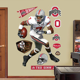 Ted Ginn Jr. Ohio State Wall Decal